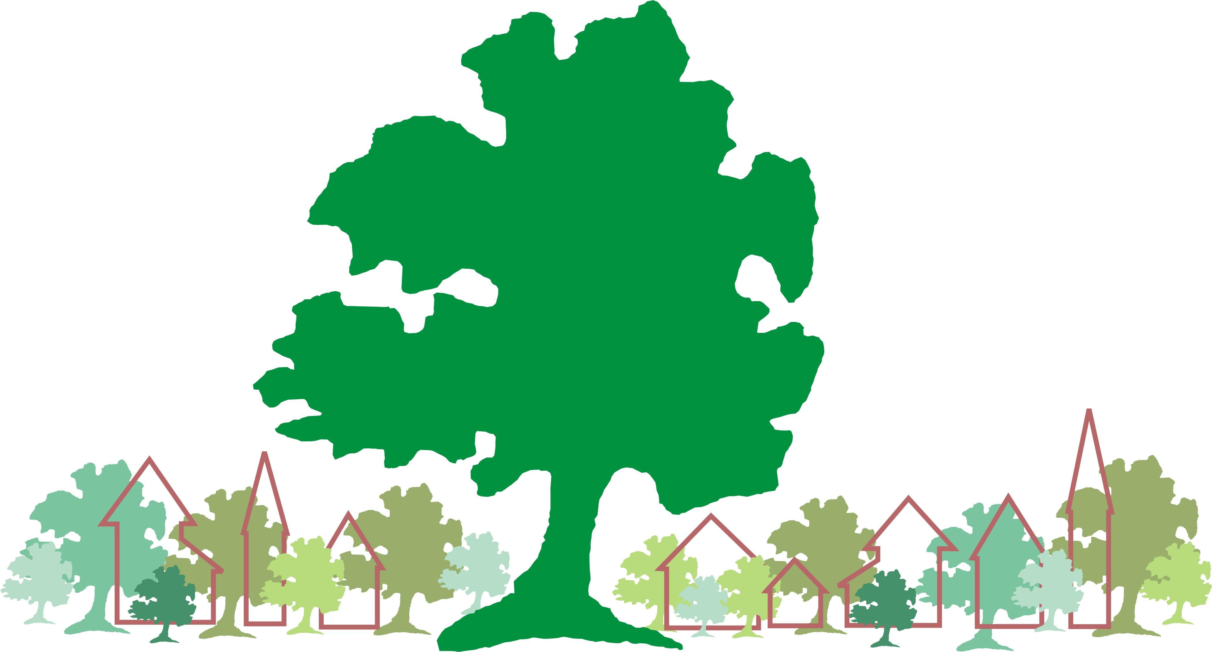 Un pueblo un bosque